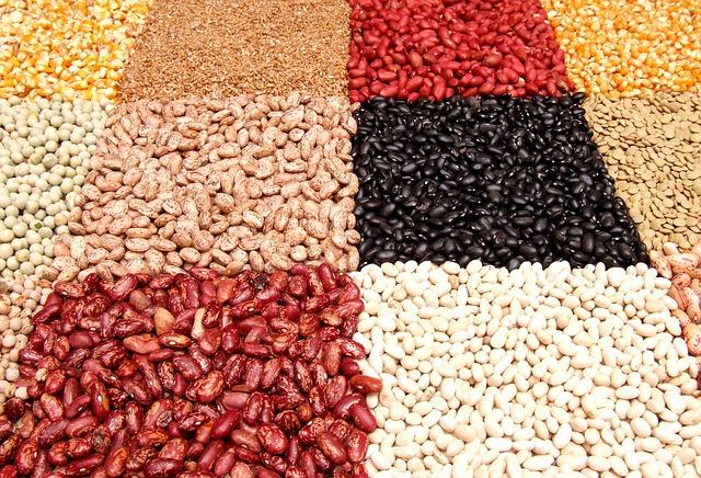 dried bean and legume display