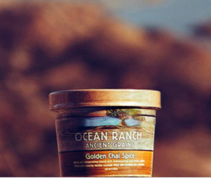 Golden Chai Spice Organic Oatmeal for Cashew Butter Chai Spice Oatmeal Energy Bites