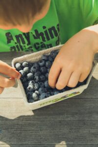 Fresh organic blueberries are a great addition to healthy breakfasts for kids.